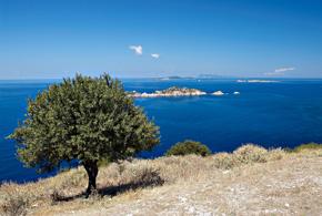 Buchlesung auf Korfu! 18.08.2013