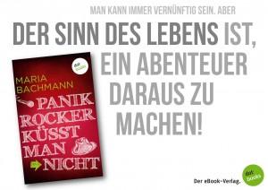 """Vom Schreiben und Nicht-Schreiben von """"Panikrocker küsst man nicht"""""""